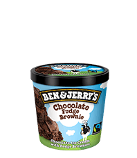 Chocolate Fudge Brownie™ Original Ice Cream Mini Cup